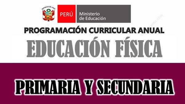 Programaciones Unidades y Sesiones para Educación Física
